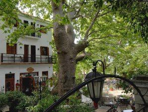 Kritsa Gastronomy Hotel – Πήλιο
